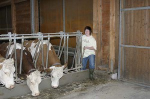 Zur sicheren Rinderhaltung tragen insbesondere bei: Fressfanggitter, Personenschlupf, Treibhilfe und enthornte Tiere