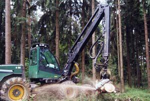 Wird befallenes Holz aufgearbeitet, sollen vorrangig Maschinen – beispielsweise ein Harvester – eingesetzt werden.                                                                  Foto: SVLFG